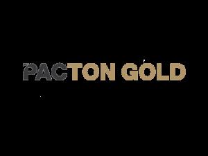 DigiGeoData - PactonGold logo