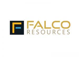 DigiGeoData - falco logo
