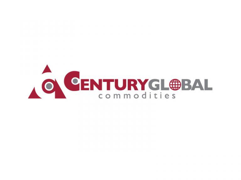 DigiGeoData - century logo