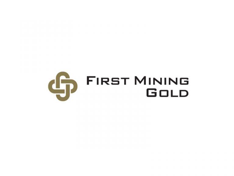 DigiGeoData - first mining logo