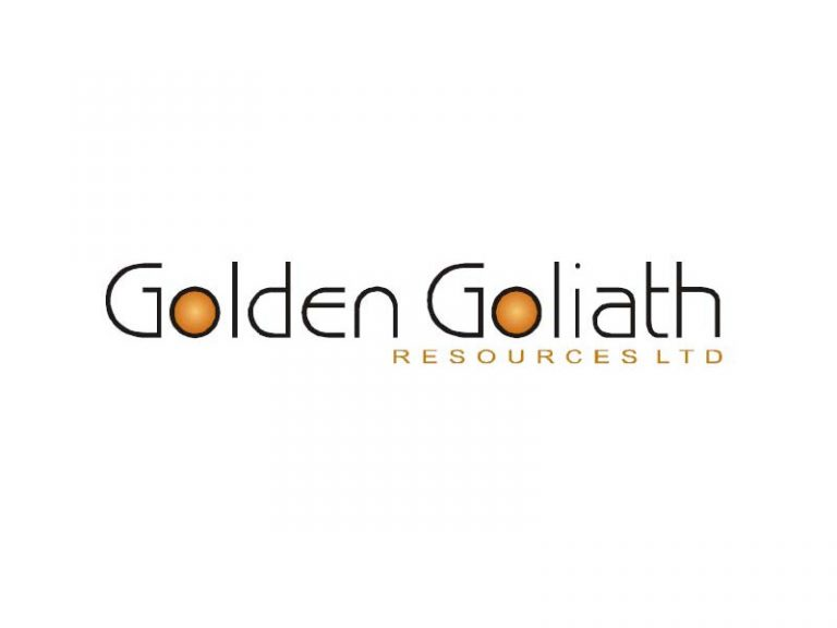 DigiGeoData - golden goliath logo