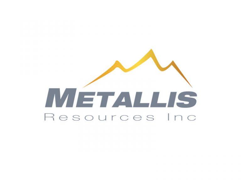 DigiGeoData - metallis logo