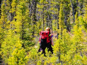 Photo courtesy of Midland Exploration