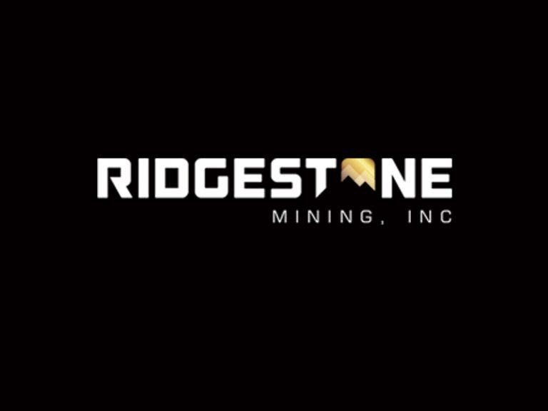 DigiGeoData - riverstone logo