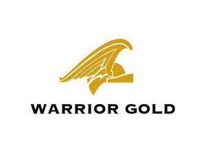 DigiGeoData - warrior logo 1