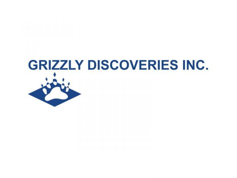 DigiGeoData - grizzly logo