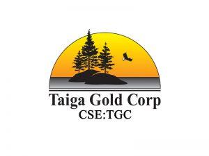 DigiGeoData - taigo logo