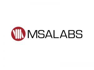 DigiGeoData - msa logo