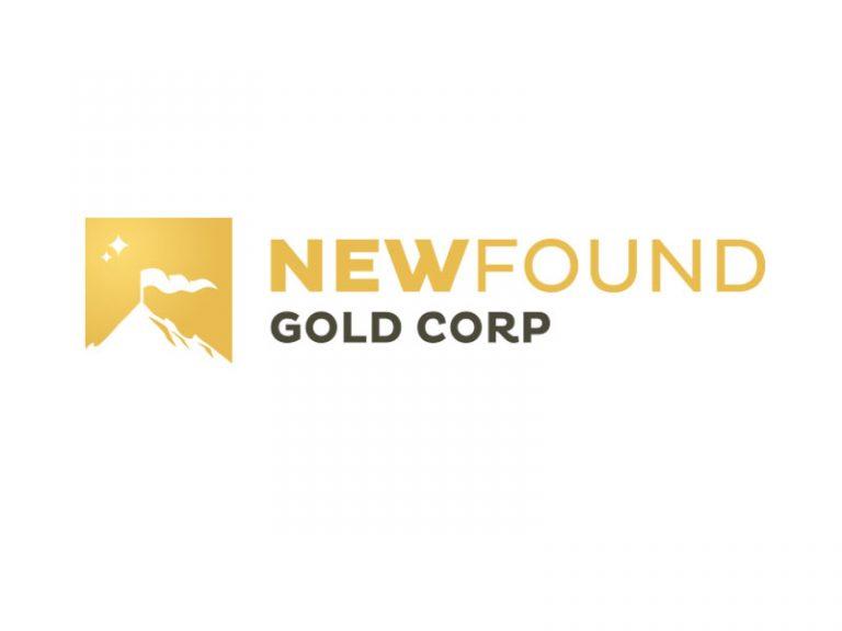 DigiGeoData - new found gold logo