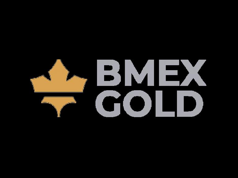 DigiGeoData - bmex logo