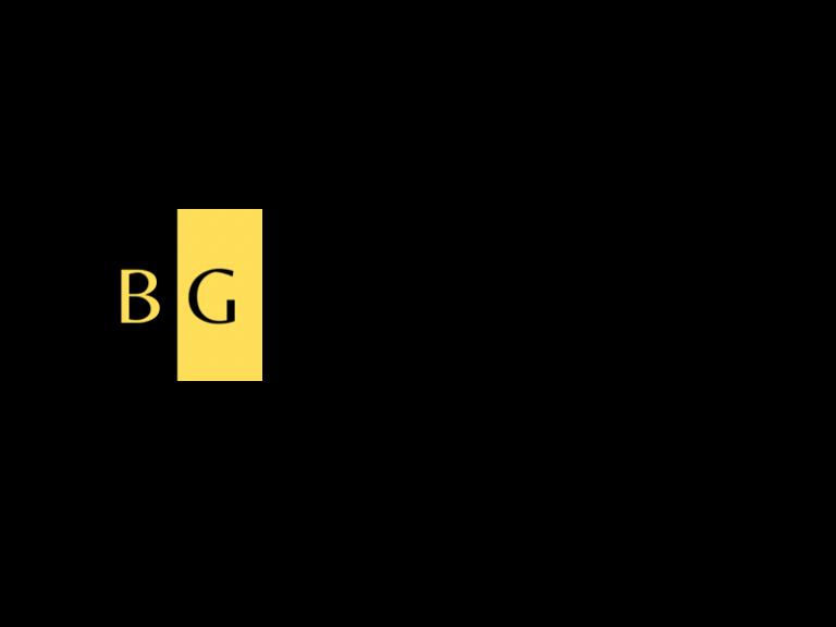 DigiGeoData - brigadier logo