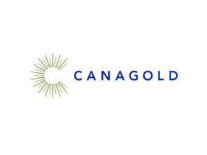 DigiGeoData - canagold logo