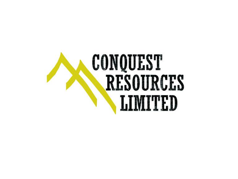 DigiGeoData - conquest logo