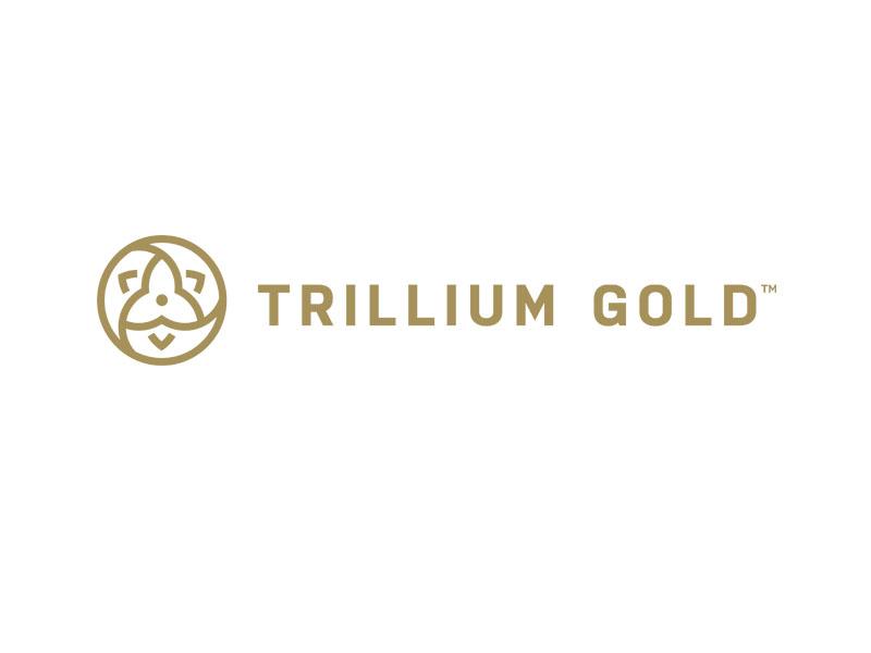 DigiGeoData - trillium logo