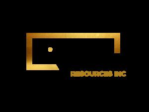 DigiGeoData - IMR BLACK logo