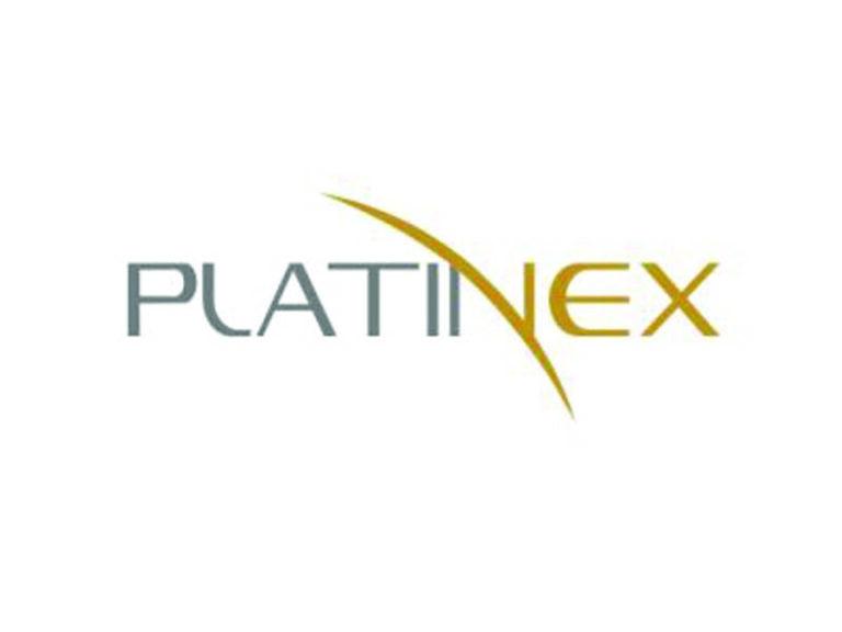 DigiGeoData - platinex logo