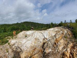 Photo Courtesy of Magna Terra Minerals