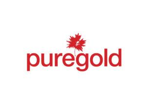 DigiGeoData - puregold logo