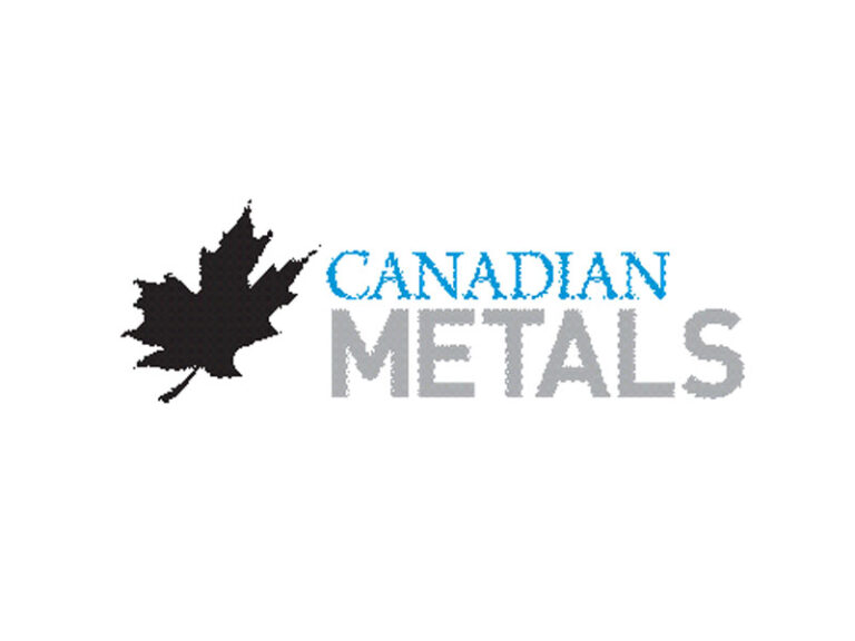 DigiGeoData - Canadian Metals Inc Logo