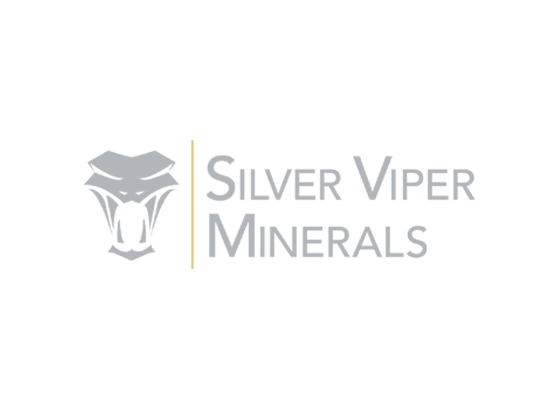 DigiGeoData - Silver Viper Minerals Logo